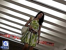 3 movies - Public up skirt pussy hq videos